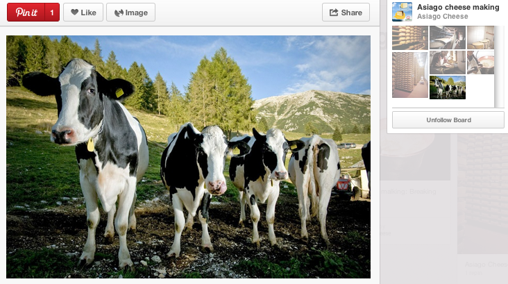 Asiago su Pinterest